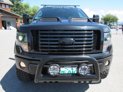 2013 Ford F150 FX4 (4)